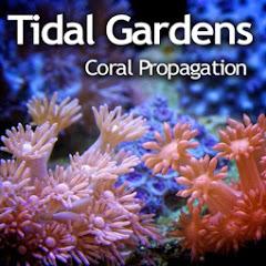 Tidal Gardens