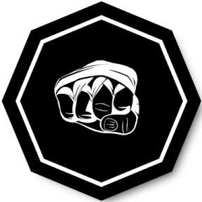 MMA fightness
