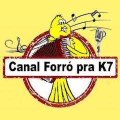 Forro pra Cassete