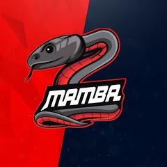 8bit MAMBA