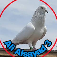 Ali Alsayad 3