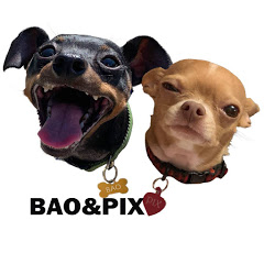 Bao and Pix