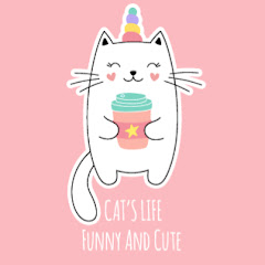 Funny And Cute Cat's Life