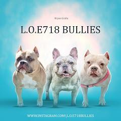 L.O.E 718Bullies