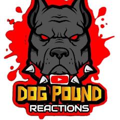 DOG POUND REACTION