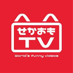 せかおもTV 【World's funny videos】