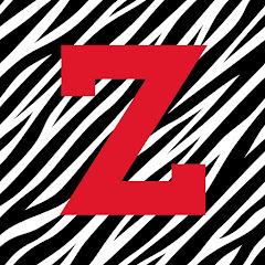 RushGamers / ZEBSHIN