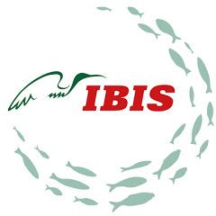 Ибис Рыбалка и туризм