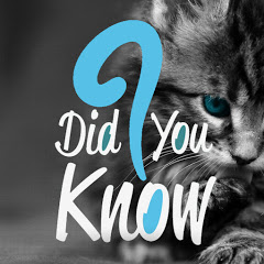 Did You Know Animals ?