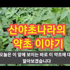 산야초나라 TV
