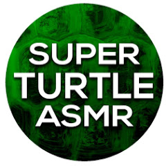 Super Turtle ASMR