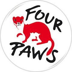 FOUR PAWS International
