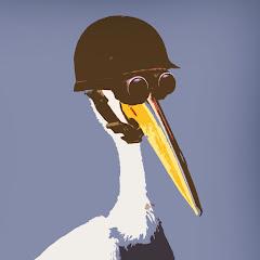 Modest Pelican