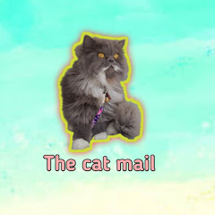 The cat mail