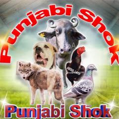 Punjabi Shok