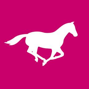 Pavo Horsefeed