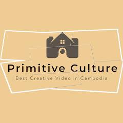 Primitive Culture