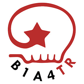 B1A4 Turkey Team