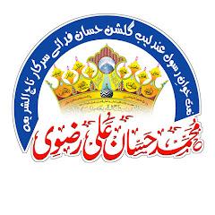Muhammad Hassan Ali Razvi