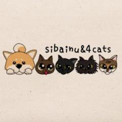 【柴犬と、4匹の先住猫】ミク、トラ、シンバ、テト、茶々の日常