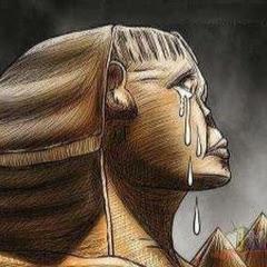 خساره يا مصر