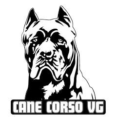 Canil VG Cane Corso Italiano