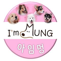 아임멍TV - I AM MUNG TV
