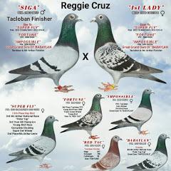 Reggie Cruz Loft & Aviary