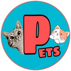 Yêu Pets
