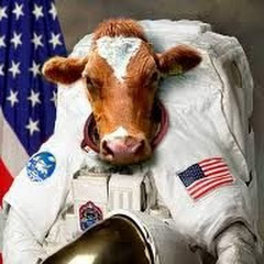 SpaceCow