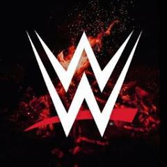 WWE WORLD STAR