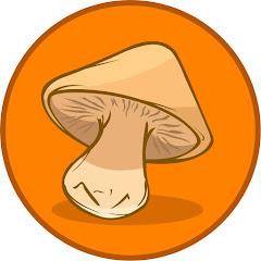 야생버섯도감