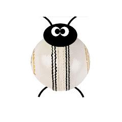 Cricket Bug