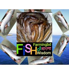 fish farmingbd of wisdom বাংলা