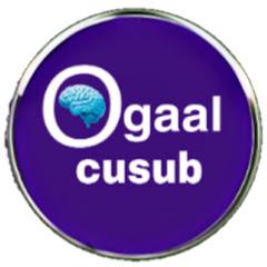 Ogaal cusub