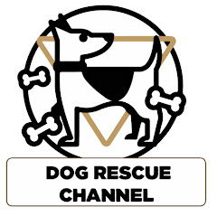 Dog Rescue Videos