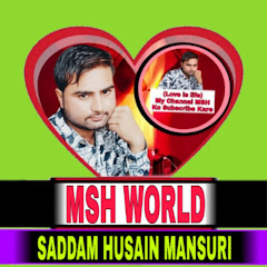 MSH World