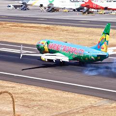 Madeira Airport Spotting