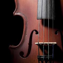 Luvasi Violinist