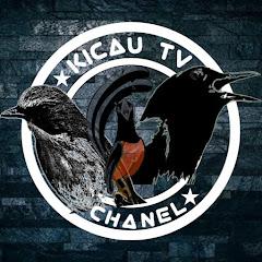 Kicau TV