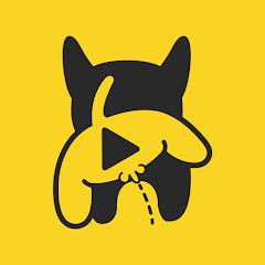 Dog's Clip