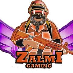 Zalmi Plays