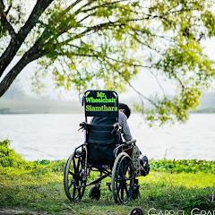 Mr Wheelchair Official