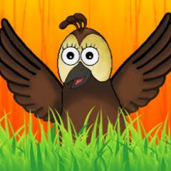 Mr. Aviary