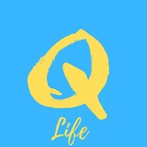 QAZAQstan Kazakh