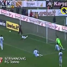 Alen Stevanović - Topic