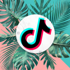 The Best Tiktok Collections
