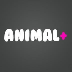 animalplus