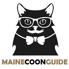 Maine Coon Guide