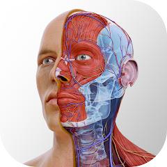 3D4Medical From Elsevier